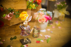 Dwarf of April (moaan) Tags: iga mie japan shopwindow showwindow figure rabbit fairyland imafeneryfairyland dwarf springtime april focusonforeground selectivefocus bokeh bokehphotography dof leica leicamp type240 noctilux 50mm f10 noctilux50mmf10 leicanoctilux50mmf10 utata 2019