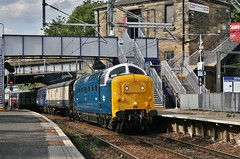 Preserved 55022 Royal Scots Grey (on hire to GB Railfreight)/ScotRail 320312 | 5N11 | Springburn (Strathclyder) Tags: british rail britishrail br class 55 deltic 55022 royalscotsgrey royal scots grey rsg springburn glasgow scotland gb railfreight gbrailfreight 55007 pinza scotrail 320312