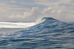 Rollin' (Joost10000) Tags: surf wave pacific ocean sea tahiti teahupoo travel adventure landscape seascape canon canon5d polynesia french polynesie francaise outdoors