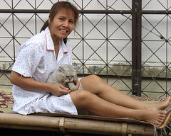 pretty lady with her persian cat (the foreign photographer - ฝรั่งถ่) Tags: pretty lady persian cat bangkhen bangkok thailand canon bamboo table
