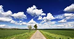 Clouds (r.wacknitz) Tags: clouds cloudporn landschaft landscape niedersachsen lowersaxony pathway harzvorland nikond3400 sigma1020 colorefexpro4 outside sky view dramatic field blue
