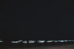 _MG_3282 (waychen_c) Tags: philippines ph visayas centralvisayas bohol provinceofbohol panglao municipalityofpanglao panglaoisland alonabeach boholsea sea beach coast coastline seascape island night nightscape nightview light boat stars cebutour2019 菲律賓 維薩亞斯 維薩亞斯群島 中維薩亞斯 保和 保和省 邦勞 邦勞島 阿羅那海灘 海灘 星空 南洋 2019宿霧旅行