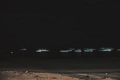 _MG_3281 (waychen_c) Tags: philippines ph visayas centralvisayas bohol provinceofbohol panglao municipalityofpanglao panglaoisland alonabeach boholsea sea beach coast coastline seascape island night nightscape nightview light boat stars cebutour2019 菲律賓 維薩亞斯 維薩亞斯群島 中維薩亞斯 保和 保和省 邦勞 邦勞島 阿羅那海灘 海灘 星空 南洋 2019宿霧旅行
