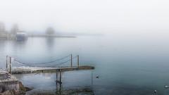 L'hiver dans mon paradis (Fred&rique) Tags: lumixfz1000 hdr raw suisse nyon lac léman brouillard fog bateau boat ponton eau glace froid hiver paysage nature