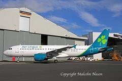 A320-214 EI-CVB AER LINGUS (shanairpic) Tags: jetairliner passengerjet a320 airbusa320 shannon irish iac eirtech aerlingus newcolours eicvb