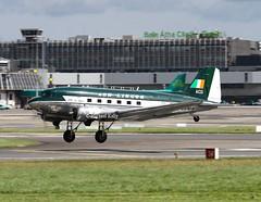 """ AerLingus ""                              Douglas DC-3                                    ZS-NTE (Flame1958) Tags: aerlingus aerlingusdc3 douglasdc3 douglas douglasaircraft zsnte dub eidw dublinairport220071707172017historic flight 4264"