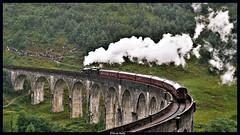 Poudlard express or Jacobite's steam (pileath) Tags: viaduct jacobitesteam scottish highland vapeur ecosse harry potter voie ferrée train glenfinnan viaduc