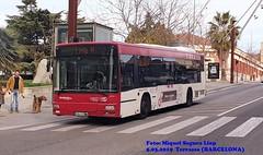 TERRASSA 2293 Ex-93 (MiQuel Segura) Tags: man castrosua