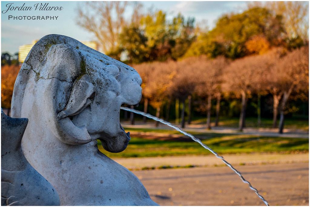 445fc8414a1 Photographie d'une statue animale au Parc Borély (Jordan Villaros  Photographie) Tags: