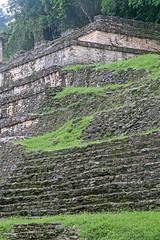 Temple Of The Skulls Ruins (peterkelly) Tags: digital canon 6d northamerica gadventures mayandiscovery palenque palenquenationalpark chiapas ruins mayan maya stone lakamha templeoftheskulls green