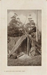 A Queensland aborigine in his shelter - very early 1900s (Aussie~mobs) Tags: queensland aborigine hut shelter home dog australia vintage indigenous native