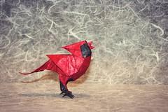 Origami Singing Cardinal (Sasha CraftSpace) Tags: origami fold photography nature explore art cardinal bird