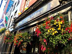 A postcard from London - The Green Man Cafe (Lyubov Love) Tags: cafe london green man postcard england uk britain british food restaurant flower flowers window door entrance