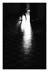 *Physical presence. (niko**) Tags: leica leicam2 noctilux50mmf10 e60 kodak trix400 135 35mm filmphotography yokohama
