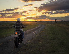 modern Marlboro man (gnarlydog) Tags: australia motorcycle sunset vanishingpoint countryside rural eveninglight adventure yamaha xsr700