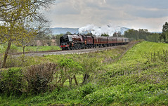 Duchess On The Marches (whosoever2) Tags: uk united kingdom gb great britain nikon d7100 train railway railroad april 2019 england stapleton shropshire marches duchessofsutherland lms stanier pacific steam 6233 thegreatbritainxii railwaytouringcompany