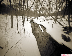 Winter's water reflections (DelioTO) Tags: 4x5 blackwhite botanical canada city cliff d23 f175 fomapan100 landscape ontario pinhole rain rural snow toned trails wild winter woods
