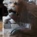 Lions stylophores du jubé, cathédrale métropolitaine de Santa Maria Assunta in Cielo e San Geminiano, XIe-XIIIe, Piazza Grande, Modène, Emilie-Romagne, Italie.