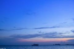 Thank you (gusdiaz) Tags: beach playa florida miami key biscayne amanecer ocean boat bote azul blue clouds sun nature naturephotography beautiful gorgeous hermoso sand arena salt life sal vida verano vacaciones summer vacation trees palms