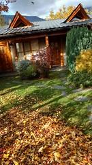 Muy otoño !!! Te estamos esperando !!! . . www.carpediemelbolson.com.ar  @carpediem_elbolson @carpediemelbolson @carpediem.cabanasysuites @turismoelbolson #ElBolsonTodoElAño #TeEstamosEsperando #quieroestarahi #cabañascarpediem #cabañas #alojamiento #turi (Cabañas & Suites) Tags: alojamiento patagonia turismoelbolson bestvacations travelers bienestar comarca elbolson suites instagram surargentino carpediem elbolsontodoelaño vacaciones viviargentina argentina teestamosesperando patagoniaargentina turismoargentina holidays visitargentina instatrip comarcaandina paisaje quieroestarahi cabañascarpediem turismo cabañas travel montañas