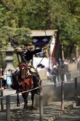 武田流流鏑馬 - Takeda style horseback archery- (meeekn) Tags: nikon nikond750 epic japan horse archery kamakura