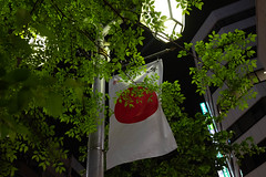 Showa Day (uaru.amphiacantoides) Tags: japan heisei 平成 令和 reiwa shibuya celebrations shibuyacrossing newera