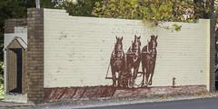"Wall Art by ""Portland WallNuts"" in Portland NSW (Paul Leader - Paulie's Time Off Photography) Tags: art portlandnsw sign wallart olympus olympusem10 paulleader mural streetart streetwallart painting advertising portlandwallnuts portland nsw newsouthwales australia color colour"