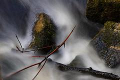 Roter Ast, Steine, Wasser (bhermann.hamburg) Tags: wasser water langzeitbelichtung longtimeexposure steine stones ast branch ngc