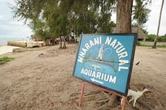 Zanzibar, Tanzania (chimck) Tags: tanzania zanzibar africa eastafrica