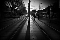 Lineas de un nuevo dia (ricardocarmonafdez) Tags: sevilla cityscape ciudad city urbano urbanscape lights shadows sunlight contraste contrast contraluz backlighting calles streets nikon monocromo monochrome blackandwhite bn lineas lines