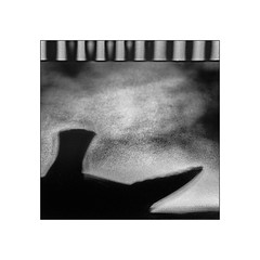 (⨀) Tags: theotherside universe 260 pigeon shadow pattern light square pigeonshadowdeskstripes anonymousvisitor
