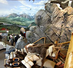 Lower Level View (R D C) Tags: 2012 ak denalinationalpark alaska