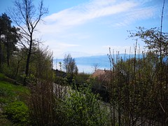 Switzerlad.Швейцария. (Sanja Byelkin) Tags: lake tree montains visittoflorencespring2019 switzerland sky oleksandrbyelkin