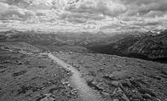 Whistlers Peak (yellocoyote) Tags: alberta altitude black bnw canada canadian climb cloud clouds explore grayscale hike jasper journey landscape majestic majesty monochrome mountain mountains national nature np park path peak rockies rocky route scenery scenic sun texture trail vista wander whistler whistlers white wild wilderness