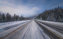 Icefields parkway (Toni_pb) Tags: canadianrockies rockies canada nikon nikond850 nikkor142428 landscape winterscape wildlife wild snow ice trees