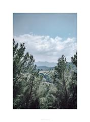©AurelienFAURE-7.jpg (Af-Visual.fr) Tags: art voyage aurelienfaure paysage photographe ©aurelienfaure summicron montagne landscapes leica saintevictoire sony tholonet sonya7riii 90mm afvisual