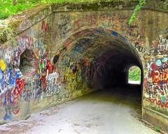 Pearson Falls Road Tunnel (esywlkr) Tags: tunnel road graffetti nc north carolina