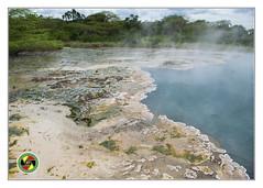 Similiki National Park - Uganda (Crested Aperture Photography) Tags: similikinationalpark uganda ugandawildlifeauthority westernuganda eastafrica landscape hotsprings africa