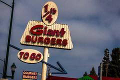(Abel AP) Tags: sign vintagesign town city hayward california usa americana america bayarea sanfranciscobayarea northerncalifornia abelalcantarphotography
