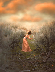 Sage and Clementine ({jessica drossin}) Tags: jessicadrossin portrait portraiture face girl woman dress orange sage brush sticks wwwjessicadrossincom dreamy clouds