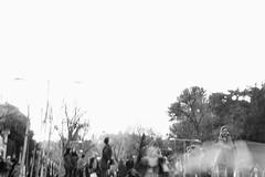 IMG_8438 (laida42) Tags: demonstration madrid 8m