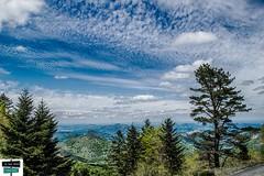 Issarbe (https://pays-basque-et-bearn.pagexl.com/) Tags: 2019 64 aquitaine arette barétous béarn colinebuch france mai montagne nature paysage pyrénées pyrénéesatlantiques ssarbe vallée