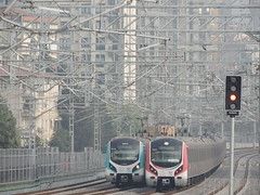 'Forest of steel' (Turkish Railways E32000 'Marmaray' units, Söğütlüçeşme, Istanbul) (Steve Hobson) Tags: söğütlüçeşme istanbul turkish railways tcdd marmaray e32000 emu hyundai rotem