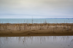 Hanlans beach. (dunescape) Tags: torontoisland hanlansbeach lakeontario toronto spring lagoon