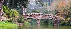 Golden Gate Park (AAcerbo) Tags: goldengatepark sanfrancisco california