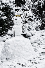 _IMG8525-There's a Snowman-23-365.jpg (TOF TOF) Tags: 23jan19 365 2019 edition 3652019 day 23365 365the2019edition day23365