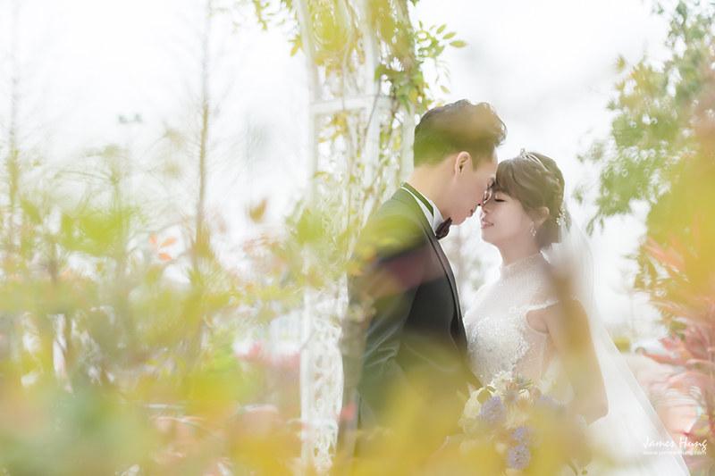 婚攝鯊魚影像團隊,婚攝價格,婚禮攝影,婚禮紀錄,婚攝收費,類婚紗,伴娘,伴郎,佈置,婚宴,台中好運來宴展中心