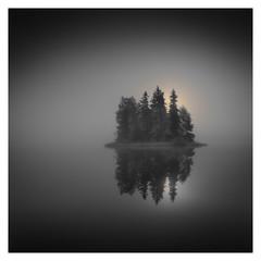 Floating Forest (Vesa Pihanurmi) Tags: landscape waterscape calm tranquility zen foggy mist woods island lake finland hämeenlinna morning dawn