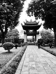 IMG_9922 (mark1136x) Tags: vietnam vsco vscocam travel canon 6d iphone 8plus 24105 50mm sea sky weather scenery fun explore sun moody hanoi danang