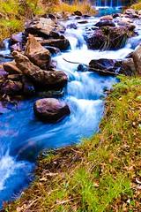 Nebrodi (Cristian Corso) Tags: nebrodi acqua torrente fiume nature flora sicily water colors landscape movimento